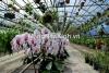 Xây dựng trang trại nông nghiệp hữu cơ organic - mangnhakinh.vn