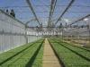 Nhà kính nhà lưới nông nghiệp nhà màng - mangnhakinh.vn
