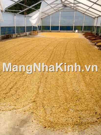 Ứng dụng hiệu ứng nhà kính để phơi sấy nông sản